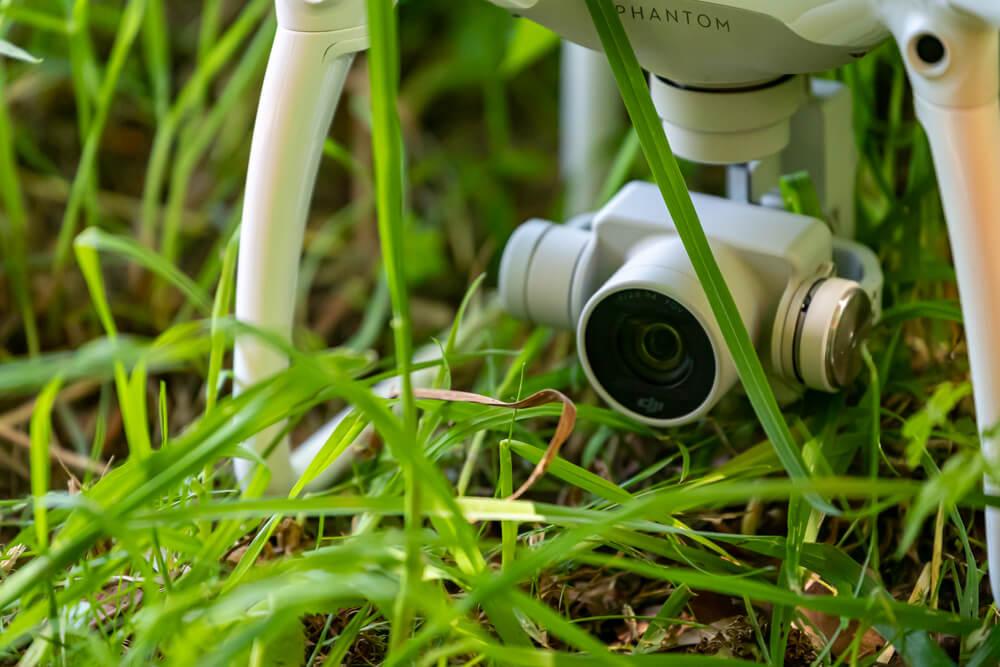 Nahaufnahme der Drohne im Gras